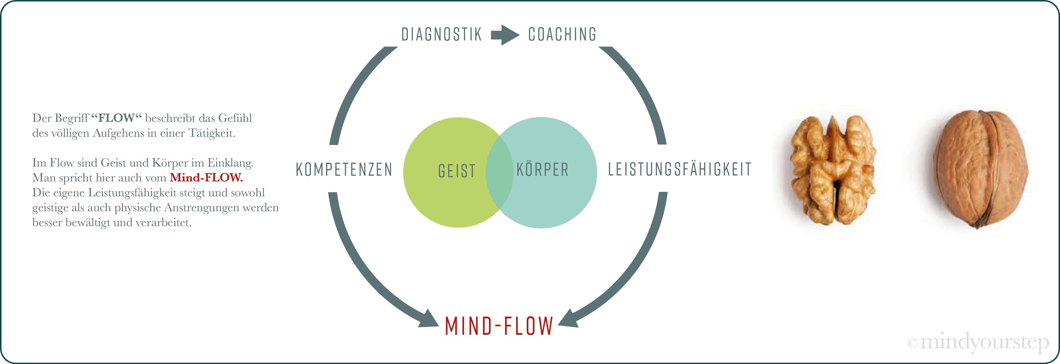 Graf.flow (1) mindyourstep